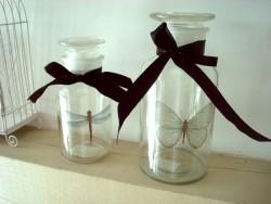 Ensemble de deux bocaux verre libellule et papillon