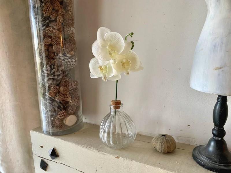 Soliflore en verre avec fleur blanche